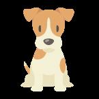 —Pngtree—dog cartoon dog various breeds_3784051